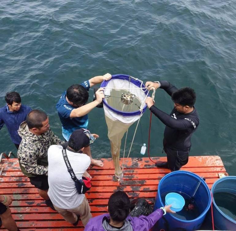 การเก็บไมโครพลาสติกจากน้ำทะเล ภาพ : Thon Thamrongnawasawat