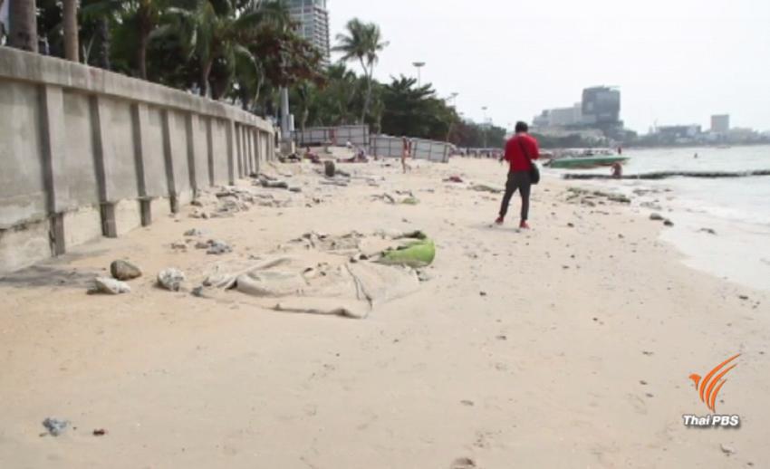 ชายหาดพัทยาเสื่อมโทรม พบซากสัตว์-ขยะมูลฝอยตลอดแนวกว่า 300 เมตร