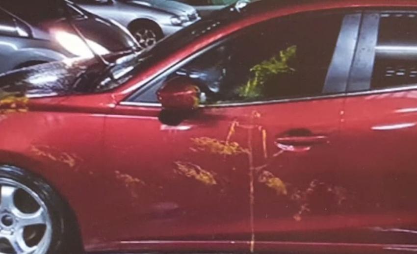แม่แจ้งความดำเนินคดีคู่กรณีโพสต์ภาพ-ข้อความดูหมิ่น หลังลูกชายใช้สีไปขีดรถยนต์เสียหาย