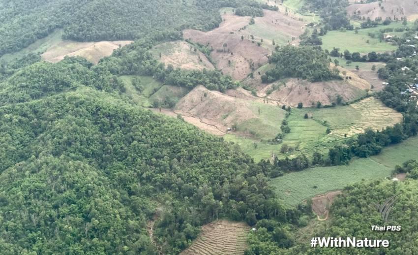 5 มิ.ย.วันสิ่งแวดล้อมโลก ชวนโซเชียลติดแฮชแท็ก #WithNature