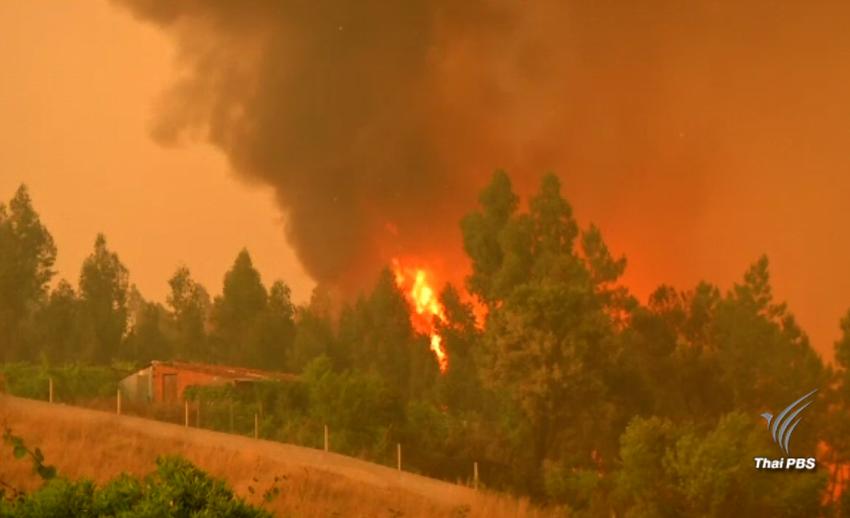 วิกฤตไฟป่าครั้งเลวร้ายในโปรตุเกส เสียชีวิตเพิ่มเป็น 62 คน