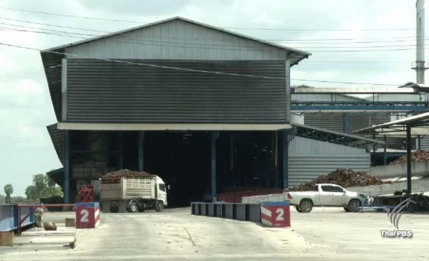 สั่งปิด 45 วันโรงงานสกัดน้ำมันปาล์มนครศรีฯ ปล่อยมลพิษ