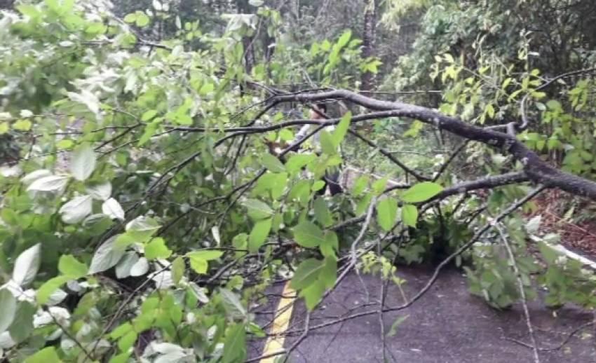 ฝนตกหนักพัดดินถล่มเส้นทาง อ.เมืองปาน จ.ลำปาง