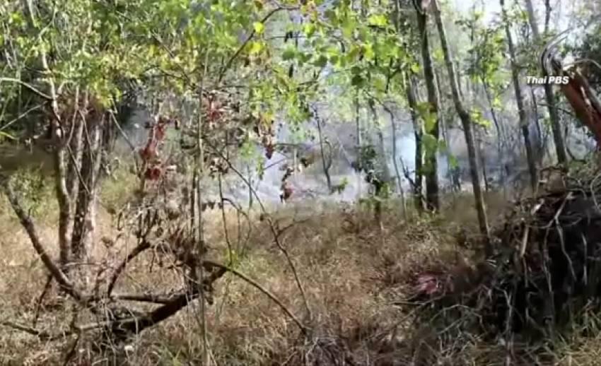 นายอำเภอครบุรี เร่งหาสาเหตุไฟไหม้ป่าอุทยานฯ ทับลาน เสียหาย 500 ไร่