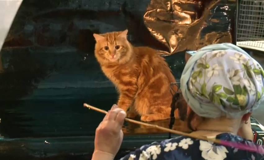 ชมความน่ารัก งานแมวนานาชาติที่รัสเซีย