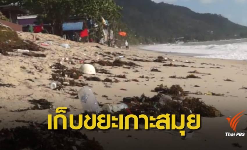 """""""เกาะสมุย"""" เร่งทำความสะอาดชายหาดรองรับนักท่องเที่ยว"""