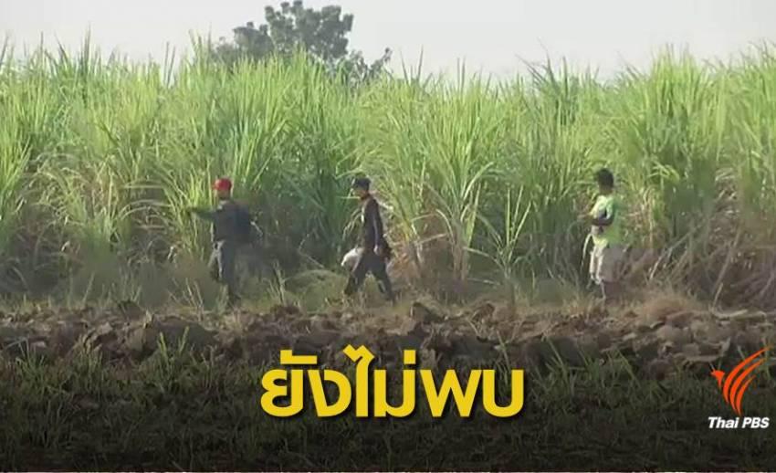 ปรับแผนค้นหาเด็กชาย 2 ขวบหายในไร่อ้อย จ.สุพรรณบุรี