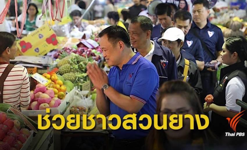"""""""ภูมิใจไทย"""" เล็งออกกฎหมายปกป้องชาวสวนยาง"""