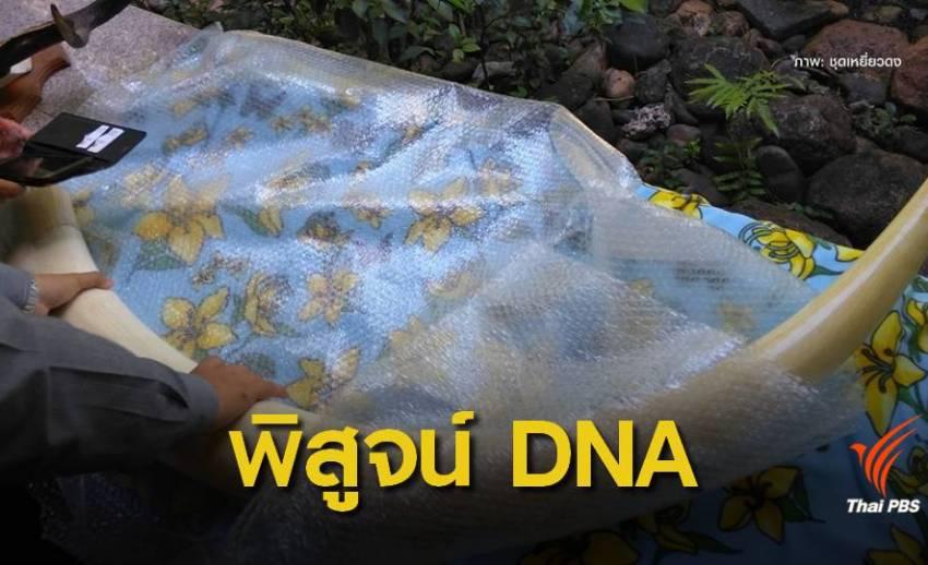 ยึดงาช้าง 7 กิ่งตรวจ DNA พิสูจน์งาช้างไทย-แอฟริกา