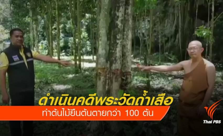 ดำเนินคดีพระวัดถ้ำเสือ ทำต้นไม้ยืนต้นตายกว่า 100 ต้น