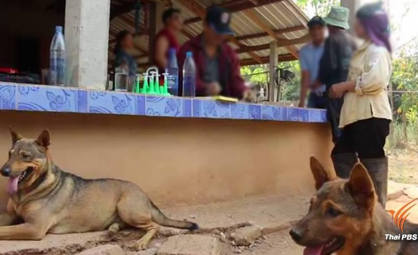 ผู้เสียชีวิตโรคพิษสุนัขบ้าคนที่ 9 ถูกลูกสุนัขข่วน-ไม่ฉีดวัคซีน