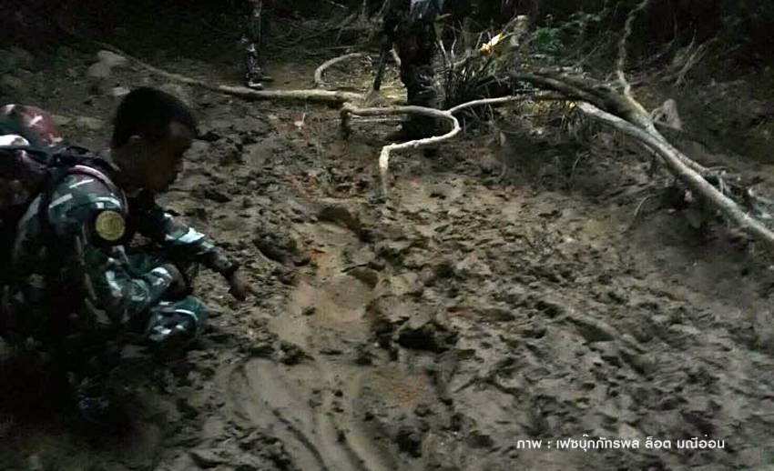 """พบร่องรอย """"ช้างป่า"""" ถูกรถชนลากขายาว 2 กม.คาดขาหลังอาจหัก"""
