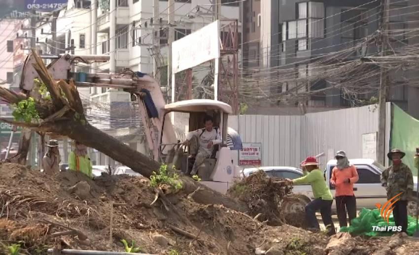 นัดหารือแก้ปัญหาตัดต้นไม้ขยายถนนเชียงใหม่ วันนี้