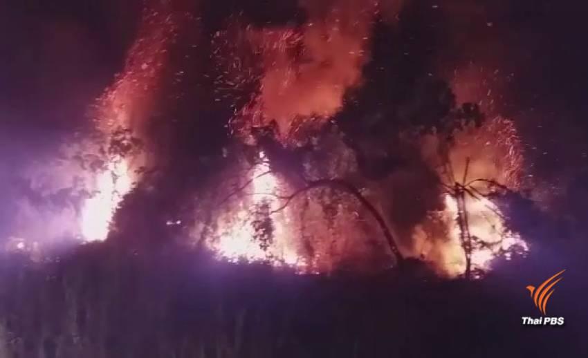 ไฟไหม้ป่าพรุกว่า 30 ไร่ จ.พังงา คุมเพลิงได้แล้ว