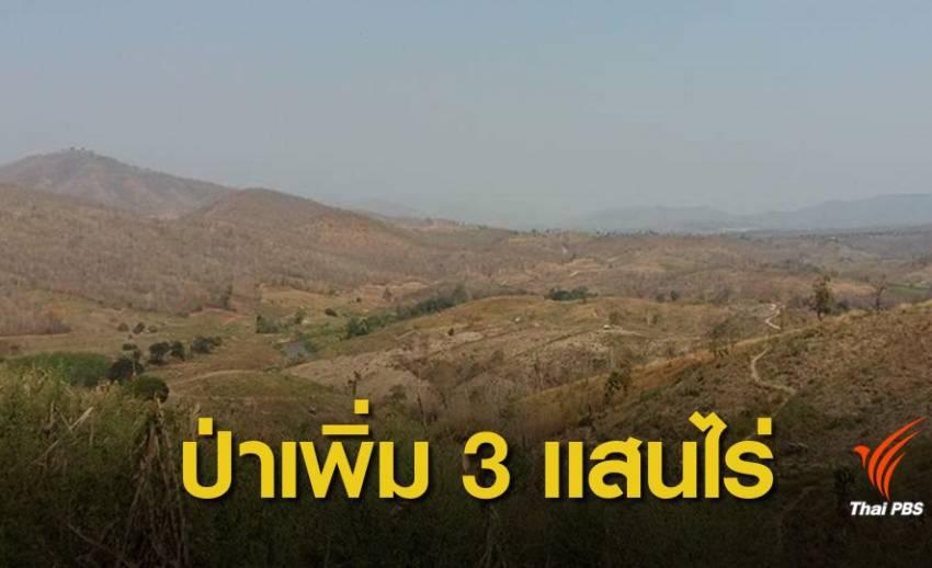 ข่าวดี ! หนึ่งปีป่าไม้ไทยเพิ่ม 3.3 แสนไร่
