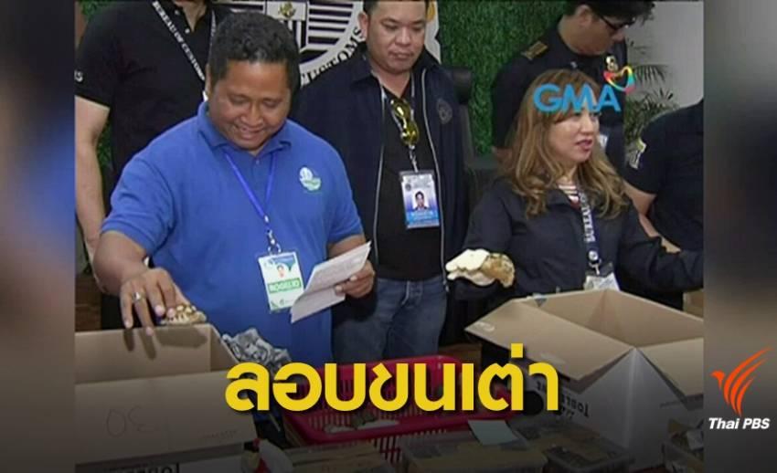 ฟิลิปปินส์ยึดเต่ากว่า 1,500 ตัวซ่อนใส่กระเป๋าลอบเข้าประเทศ