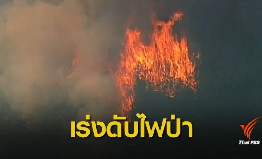 """""""ออสเตรเลีย"""" ระดมกำลังเจ้าหน้าที่ดับไฟป่า"""