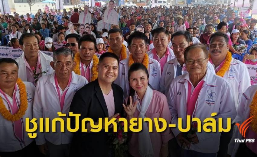 """""""ชาติไทยพัฒนา""""ลงพื้นที่หาเสียง จ.สุราษฯ - นครศรีฯ"""
