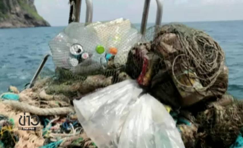 """อาสาสมัครร่วม """"ทำความสะอาดบ้านปลาเพื่อพ่อ"""" เก็บขยะใต้ทะเลเกาะพีพี"""