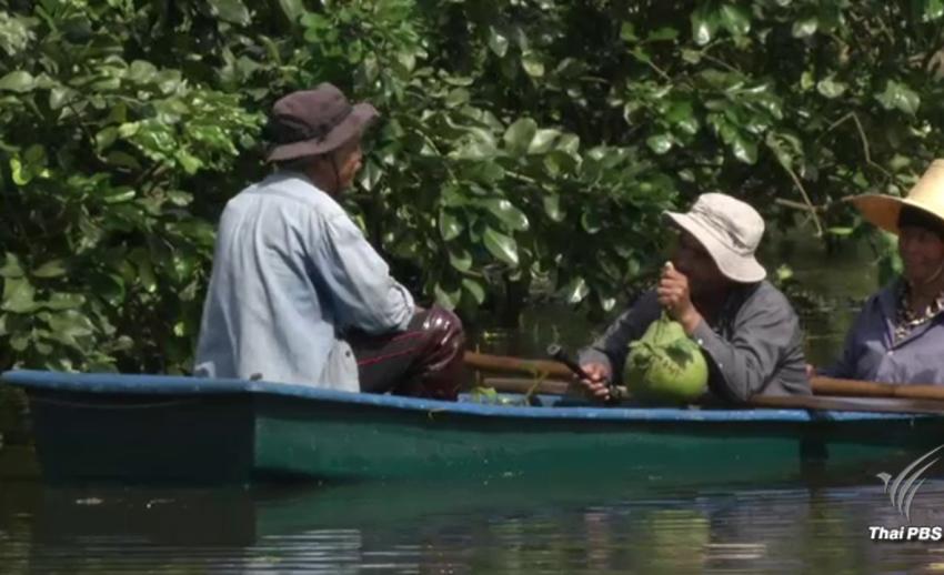 """สั่งช่วย """"สวนส้มโอทับทิมสยาม"""" 2,200 ไร่พ้นจมน้ำท่วม"""