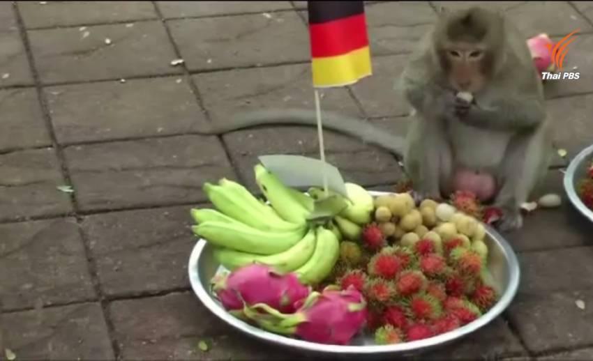 """ลิงลพบุรีทำนาย """"เยอรมนี""""คว้าแชมป์ยูโร"""