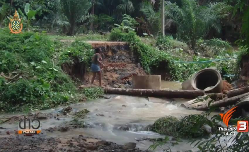 น้ำป่าจากเทือกเขาพนมเบญจาพัดถนนหมู่บ้าน อ.เมืองกระบี่ ขาด