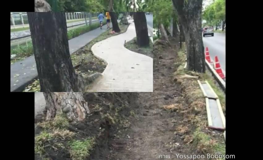 สถาปนิกชี้ทางจักรยานรอบสวนจิตรลดาผิดหลักภูมิสถาปัตยกรรม อาจทำต้นไม้ตาย-ระบายน้ำลด