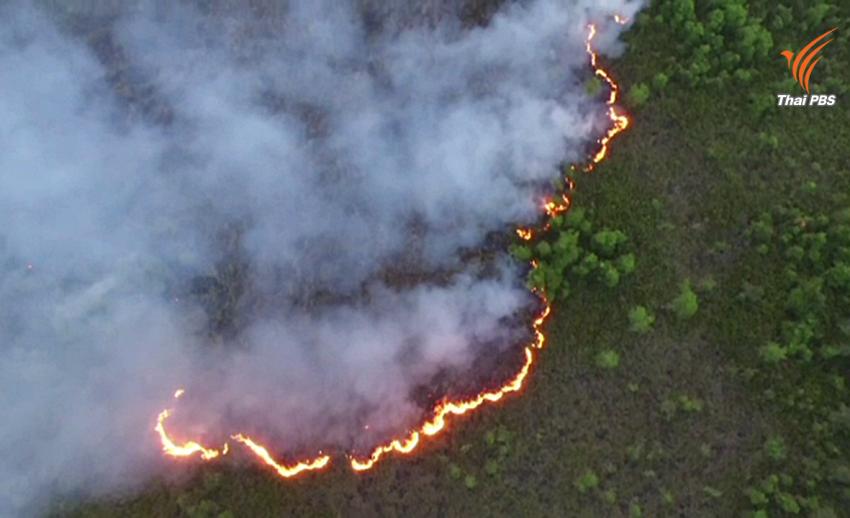 ไฟป่าพรุโต๊ะแดง จ.นราธิวาส ลามเข้าใกล้ชุมชน ควันไฟส่งผลกระทบต่อสุขภาพ