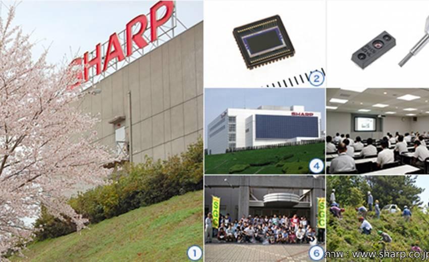มติเอกฉันท์ให้ฟอกซ์คอนน์ของไต้หวันเข้าซื้อกิจการชาร์ป ญี่ปุ่น หลังขาดทุนอ่วม 9 เดือน 3 หมื่นล้าน