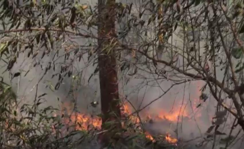 ไฟไหม้ทุ่งนาลุกลามล้อมหมู่บ้าน 2 ตำบลในเมืองตราด-ยังไม่สามารถควบคุมเพลิงได้