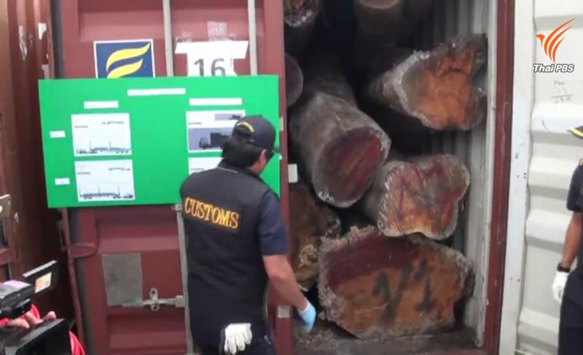 แฉวิธีการใหม่ขบวนการค้าไม้พะยูงข้ามชาติลักลอบส่งออก