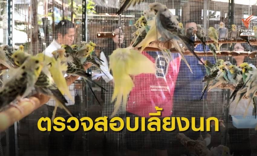 ตรวจสอบการเลี้ยงนกส่งเสียงดังรบกวนชุมชน  เขตบางซื่อ กทม.