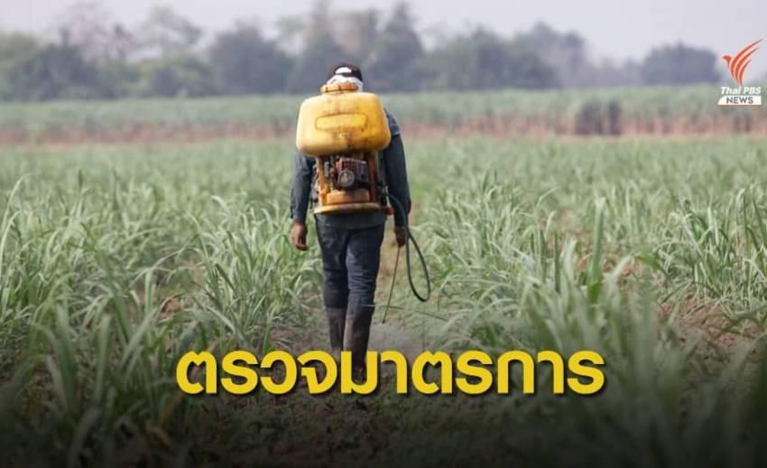 ตรวจมาตรการรองรับ หลังมติแบน 3 สารเคมีเกษตร