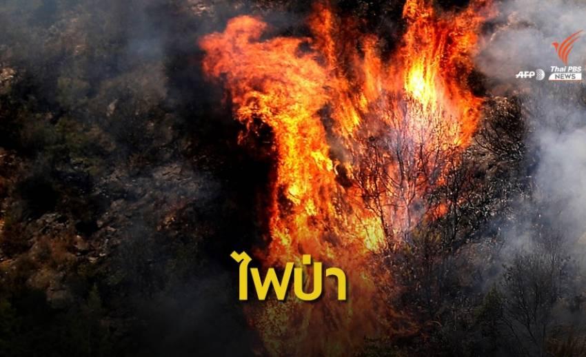 เลบานอนเผชิญวิกฤตไฟป่า คาดเกิดจากคลื่นความร้อน