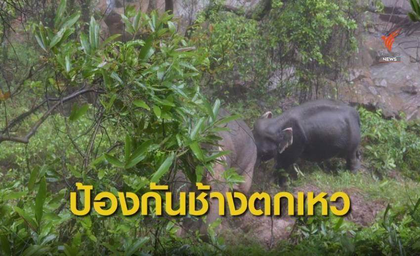 เจ้าหน้าที่อุทยานฯ เดินหน้าแผนป้องกันช้างป่าเขาใหญ่ตกเหวนรกซ้ำ