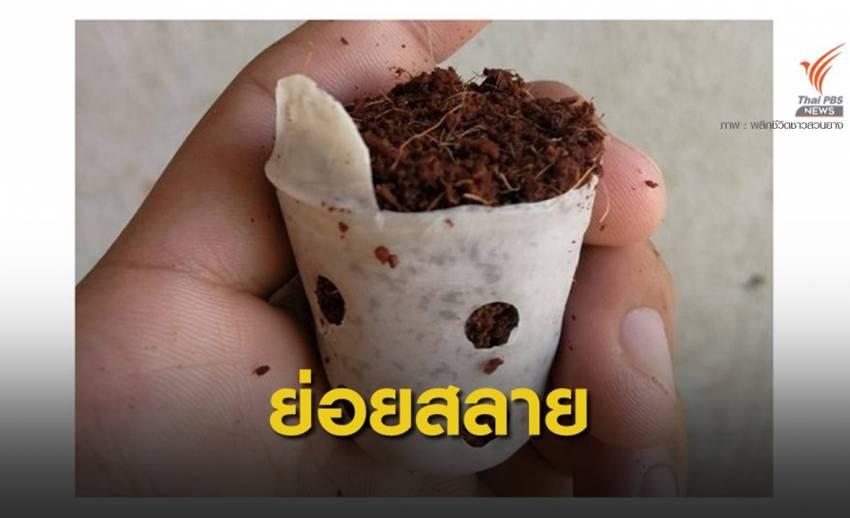 """มองโกเลีย เล็งใช้ """"ถุงเพาะชำชีวภาพ"""" จากไทยพลิกฟื้นทะเลทราย"""