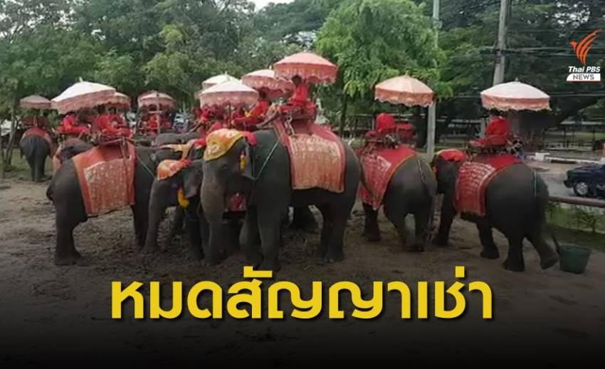 สั่งย้ายปางช้างอยุธยาฯ ออกจากพื้นที่มรดกโลกใน 30 วัน