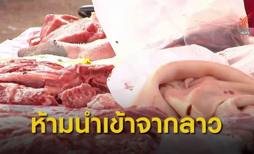 """""""ปศุสัตว์"""" สั่งชะลอนำเข้าหมูจากลาว 90 วัน ป้องกันอหิวาต์หมูระบาด"""