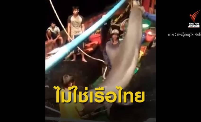 """ระบุเรือ """"จับโลมา"""" ในน่านน้ำมาเลย์ ซื้อจากไทยเมื่อปี 59"""
