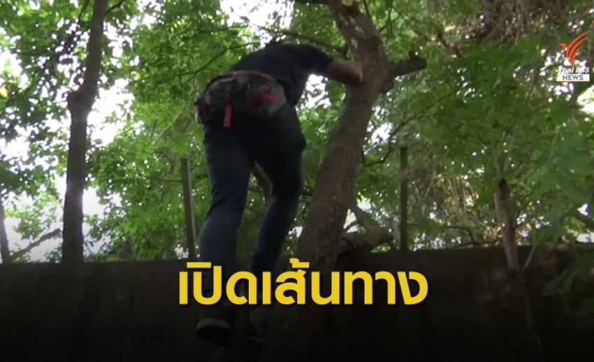 เปิดเส้นทาง แก๊งค้าใบกระท่อมข้ามแดนไทย- มาเลย์