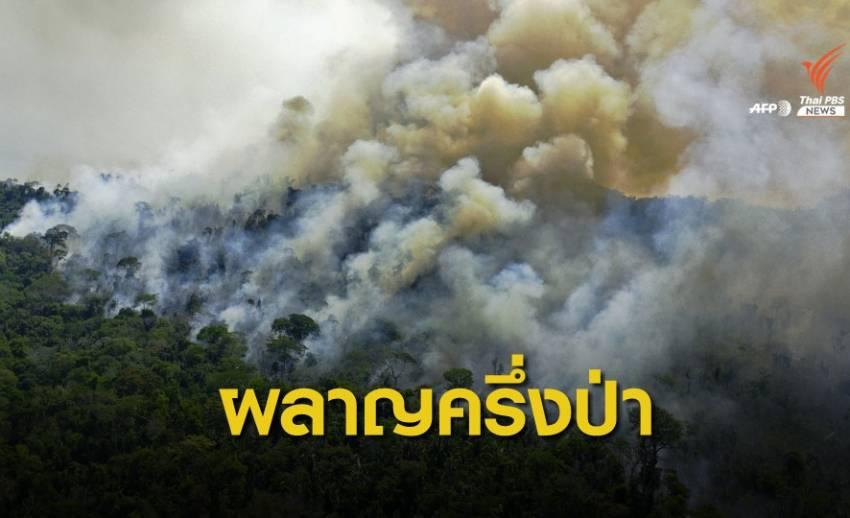 จับตา! ผืนป่าแอมะซอนถูกทำลายมากที่สุดในรอบ 12 ปี