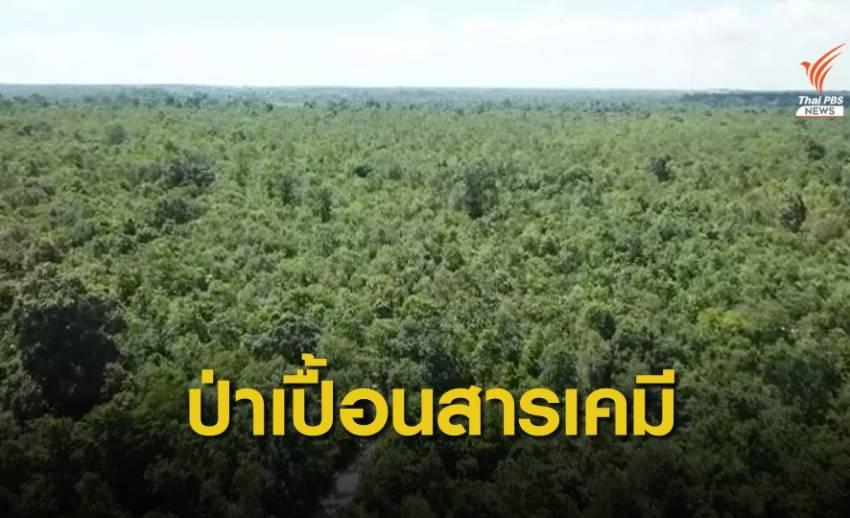THE EXIT  : ป่าเปื้อนสาร (ตอน 1)