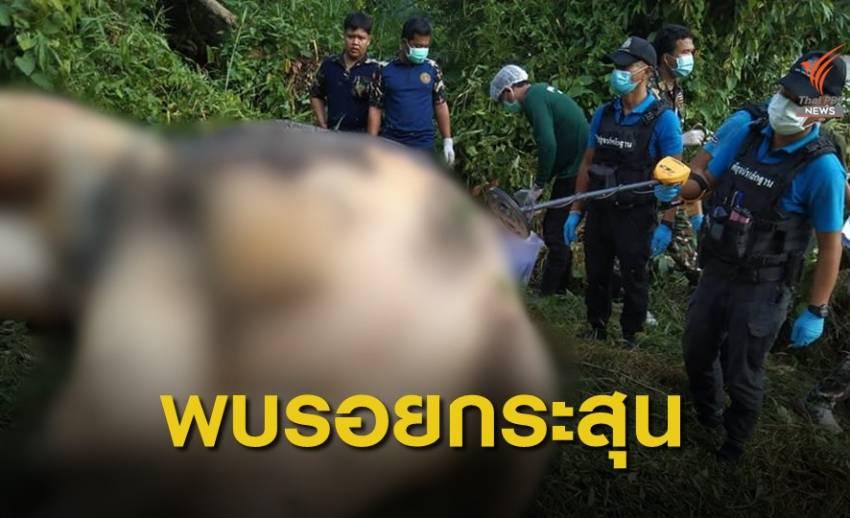 พบซากช้างป่าในอุทยานฯ น้ำตกซีโป คาดถูกฆ่าเอางา
