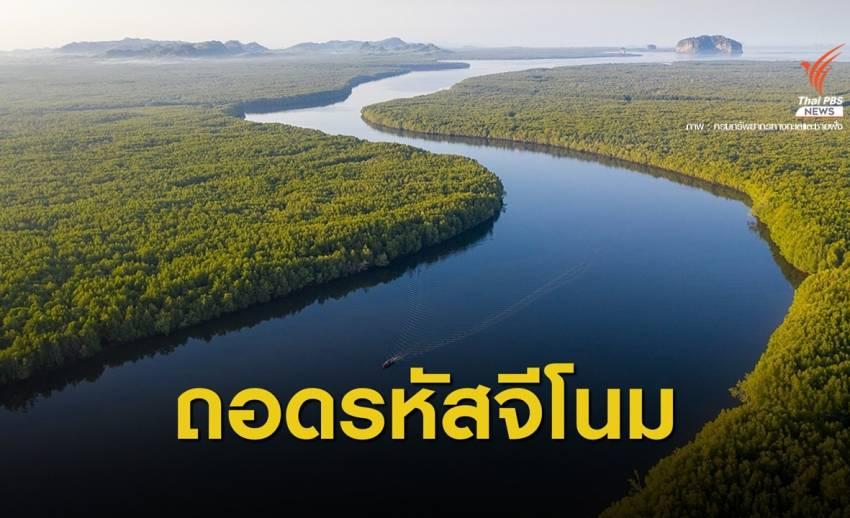 สวทช.-ทช.จับมือวิจัยจีโนมพืชป่าชายเลนเสี่ยงสูญพันธุ์