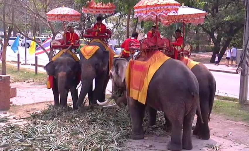ในนามช้างไทย
