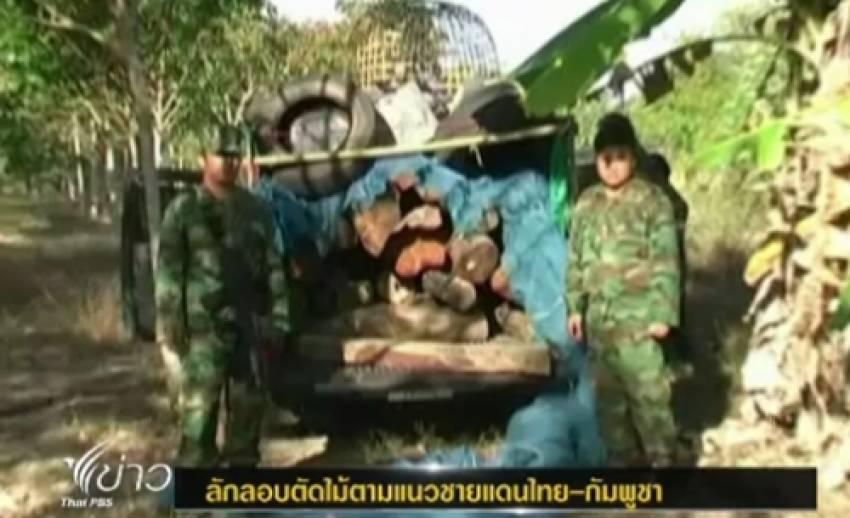 เจ้าหน้าที่จับชาวกัมพูชาลักลอบตัดไม้พะยูงใน จ.ศรีสะเกษ