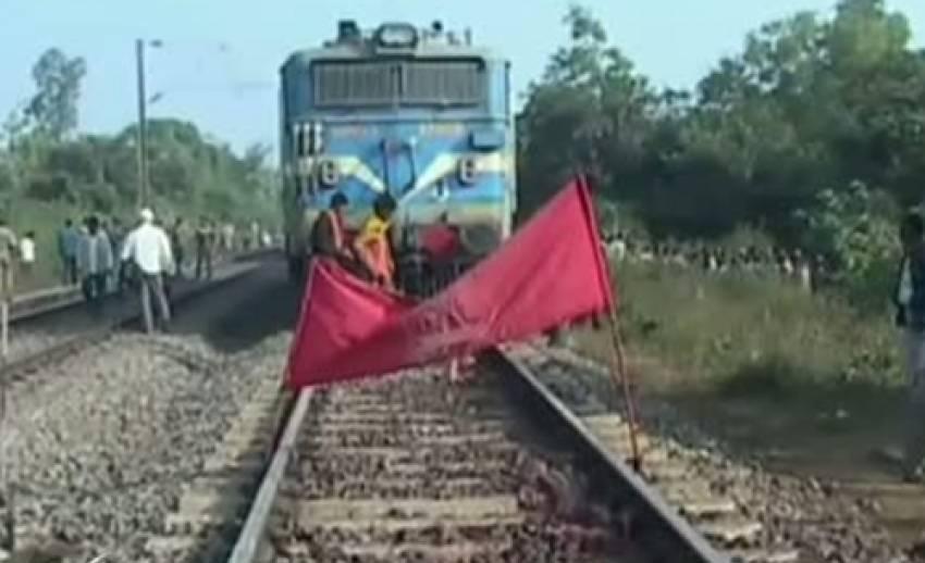 เกิดเหตุรถไฟชนช้างป่าตาย 5 ตัวในอินเดีย