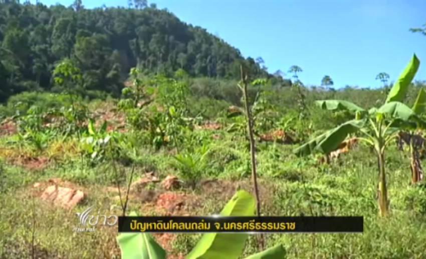 """บุกรุกป่าทำ """"สวนยาง"""" หนึ่งสาเหตุ ทำดินโคล่นถล่มใน จ.นครศรีฯ."""