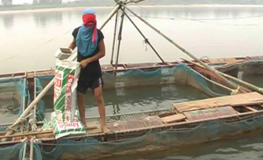 """อากาศหนาวส่งผลกระทบผู้เลี้ยง """"ปลากระชัง"""" ในแม่น้ำโขง"""