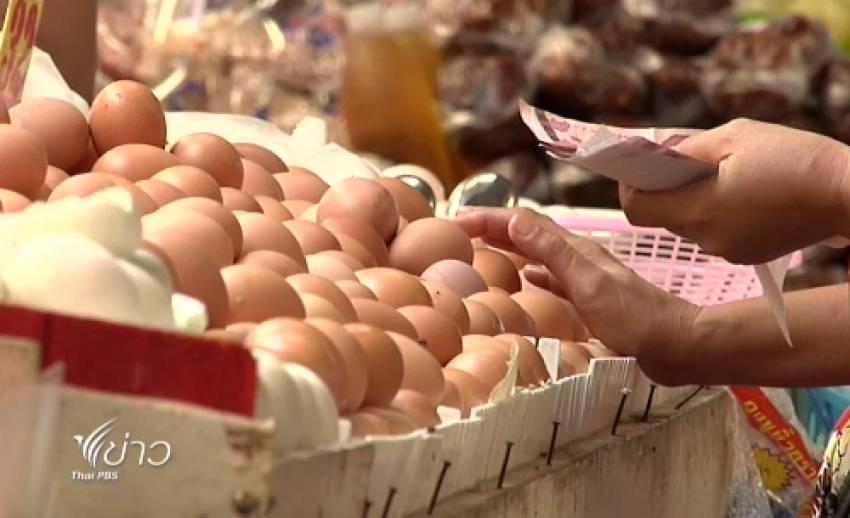 """""""เอ้กบอร์ด"""" เตรียมหารือ """"ราคาไข่แพง"""" พร้อมเรียกผู้เลี้ยงไก่ไข่ชี้แจงต้นทุนบ่าย 29พ.ค.นี้"""
